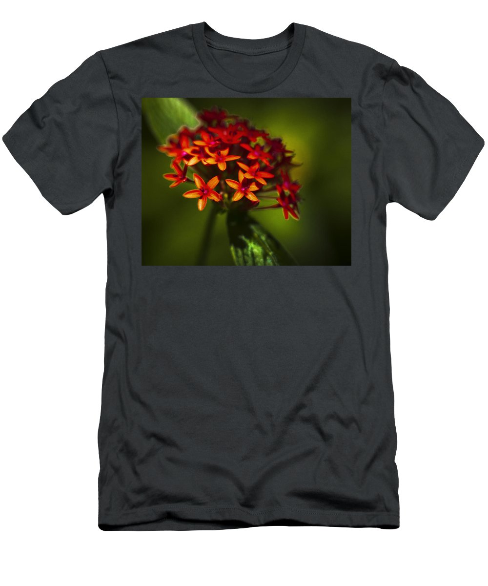 Flowers Men's T-Shirt (Athletic Fit) featuring the photograph Red Flowers by Bradley R Youngberg