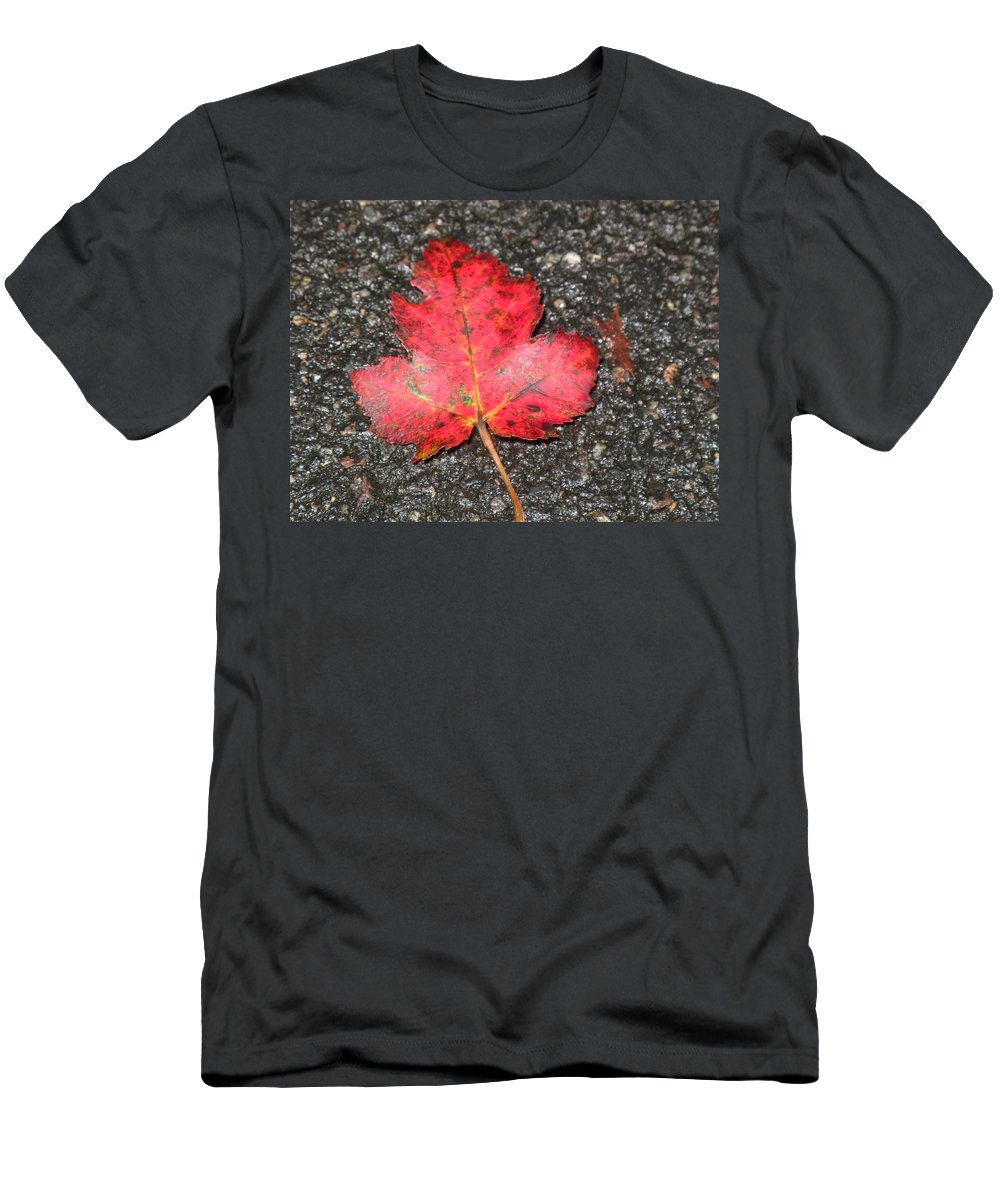 Leaves Men's T-Shirt (Athletic Fit) featuring the photograph Red Leaf On Pavement by Barbara McDevitt