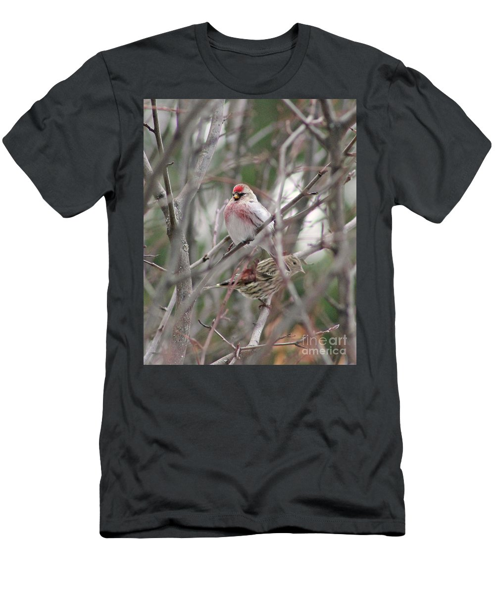Redpoll Men's T-Shirt (Athletic Fit) featuring the photograph Redpoll And Pine Siskin by Leone Lund