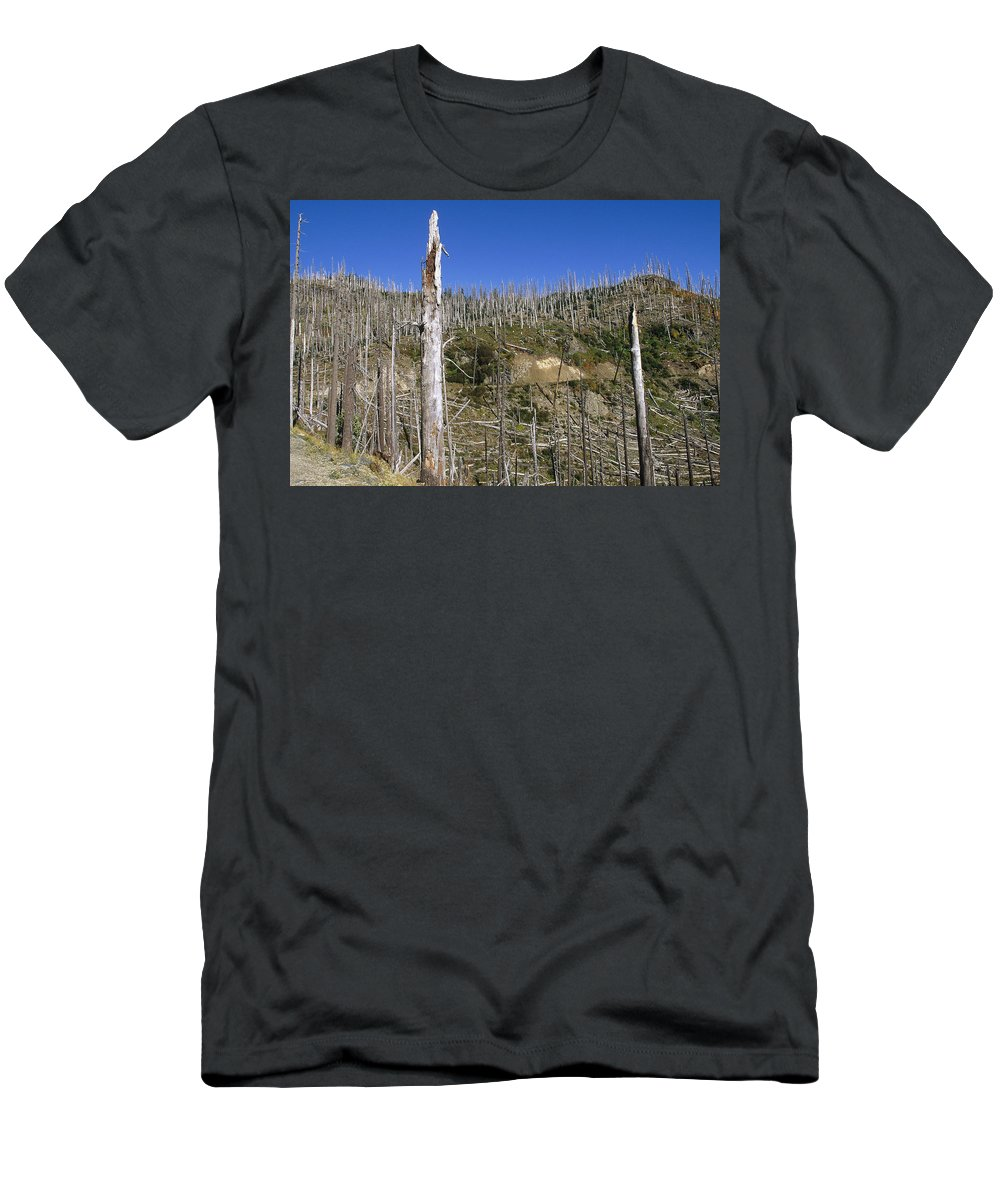 Feb0514 Men's T-Shirt (Athletic Fit) featuring the photograph Regrowth Since Eruption Mt Saint Helens by Konrad Wothe