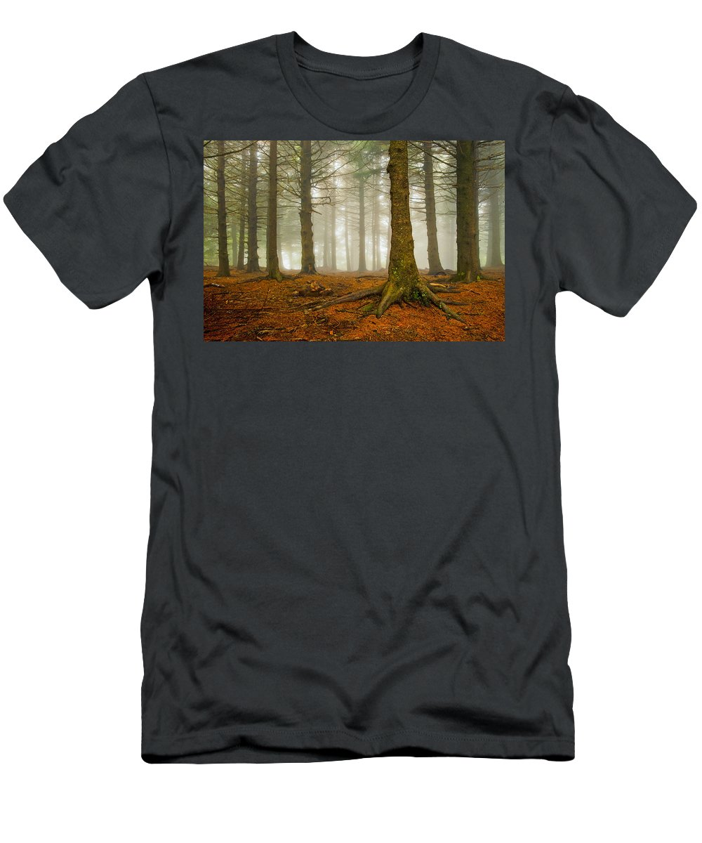 Autumn Men's T-Shirt (Athletic Fit) featuring the photograph Rooted by Joye Ardyn Durham