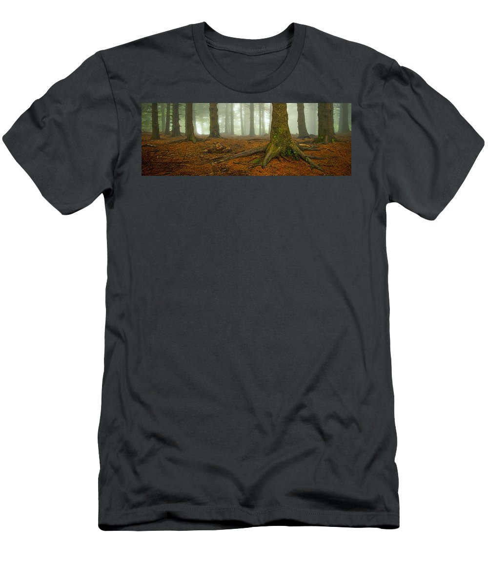 Autumn Men's T-Shirt (Athletic Fit) featuring the photograph Rooted-pano by Joye Ardyn Durham