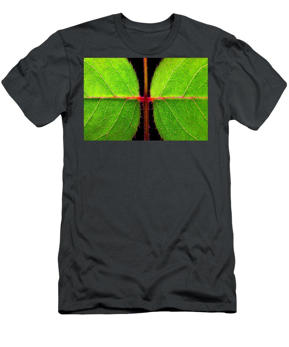 Rose Men's T-Shirt (Athletic Fit) featuring the photograph Rose Leaves by Photophilous