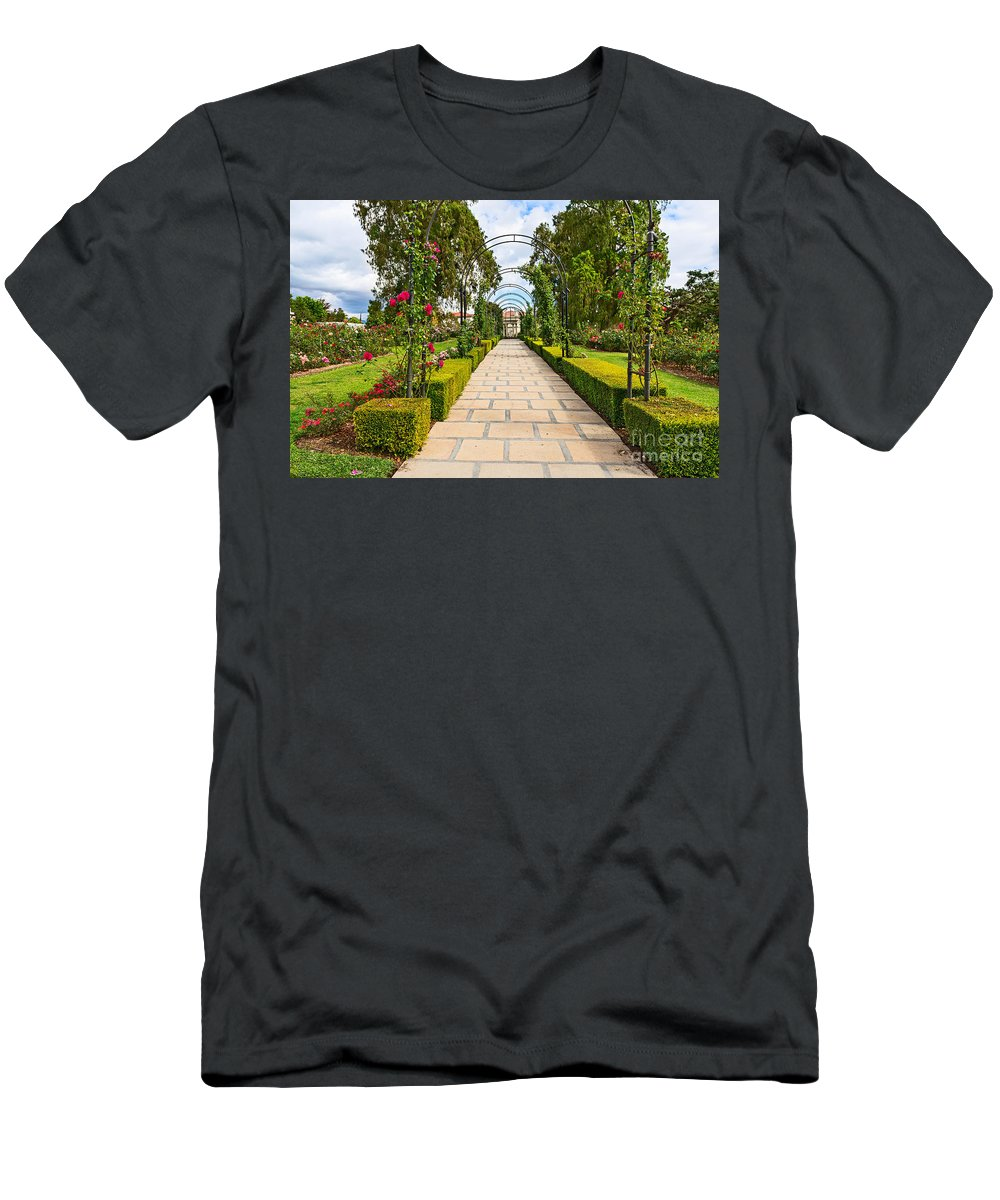 Rose Garden Men's T-Shirt (Athletic Fit) featuring the photograph Rosy Path by Jamie Pham