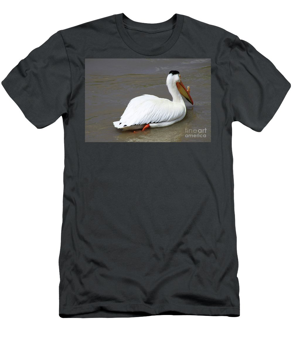 Bird Men's T-Shirt (Athletic Fit) featuring the photograph Rough Billed Pelican by Alyce Taylor