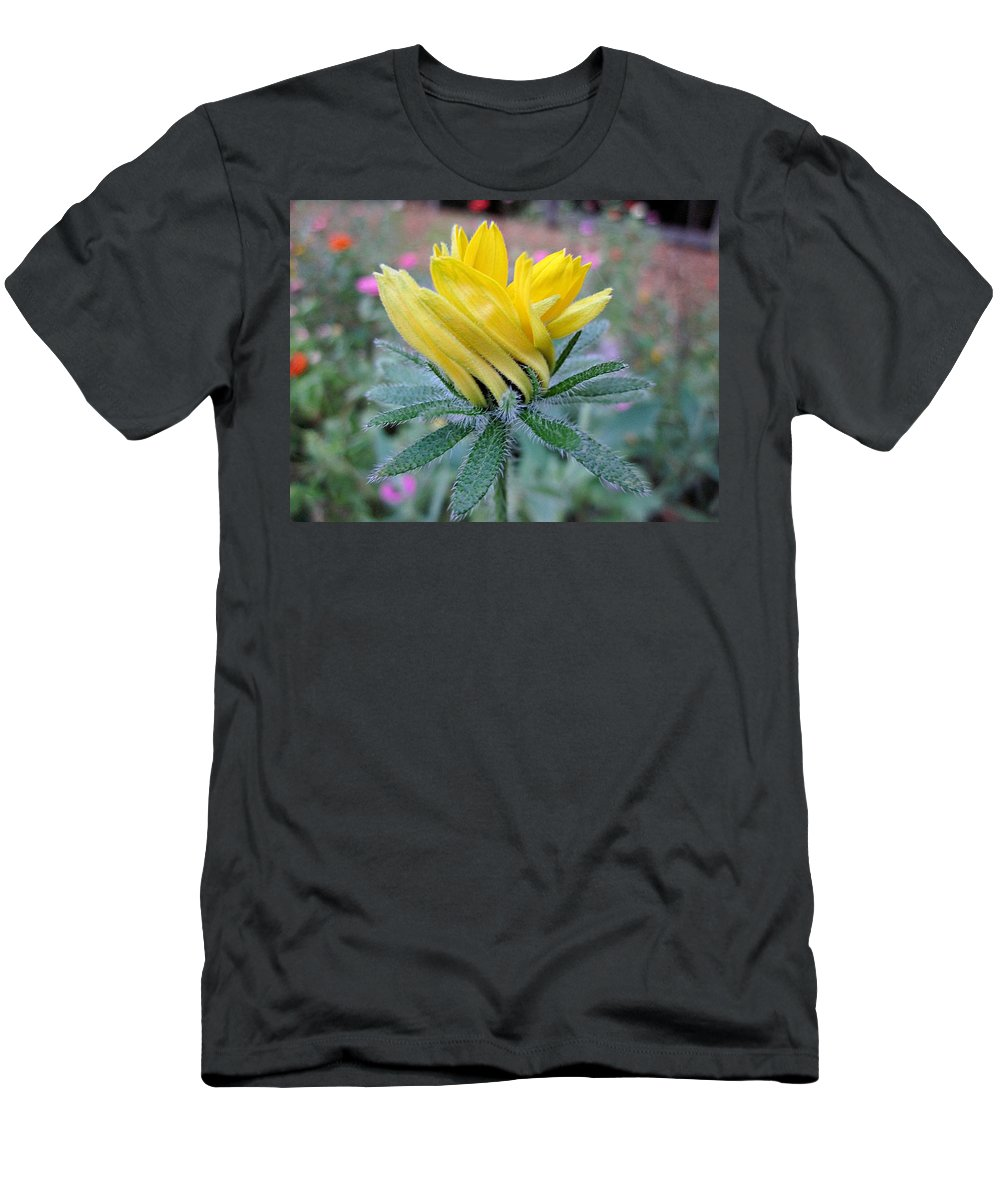 Rudbeckia Men's T-Shirt (Athletic Fit) featuring the photograph Rudbeckia Bud Twist by MTBobbins Photography