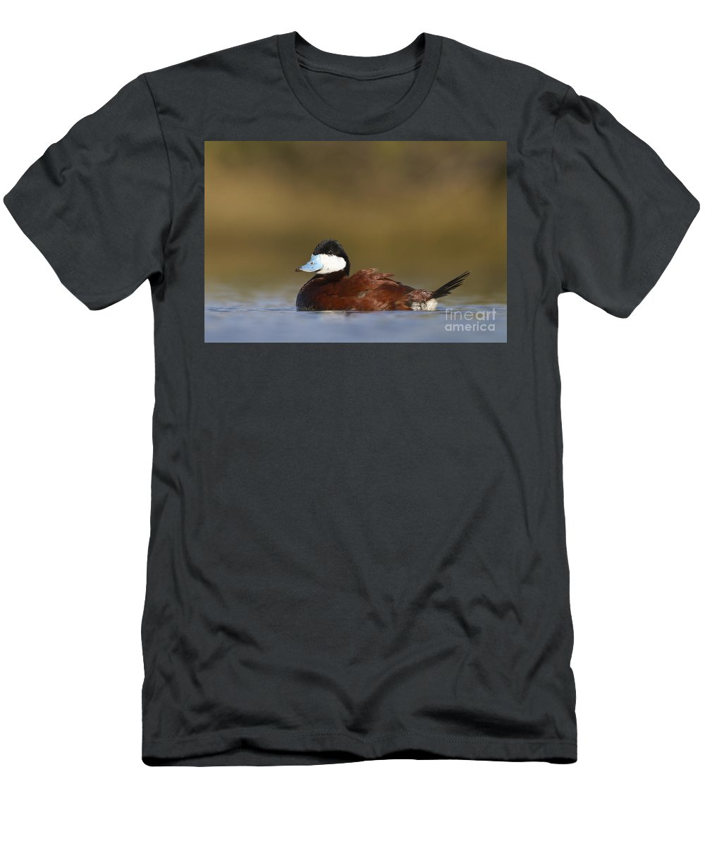 Duck Men's T-Shirt (Athletic Fit) featuring the photograph Ruddy Duck by Bryan Keil