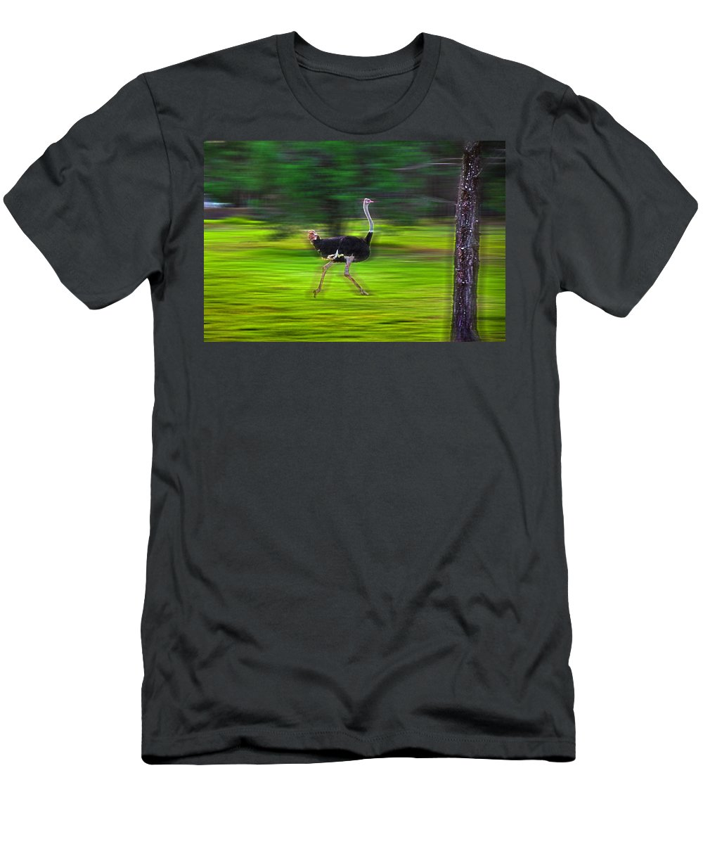 #ostrich Men's T-Shirt (Athletic Fit) featuring the photograph Run Ostrich by Miroslava Jurcik