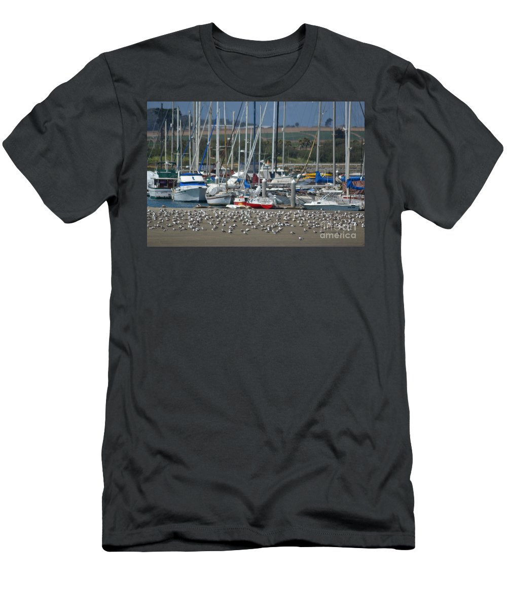 California Men's T-Shirt (Athletic Fit) featuring the photograph Sailing Sailing by Mary Rogers