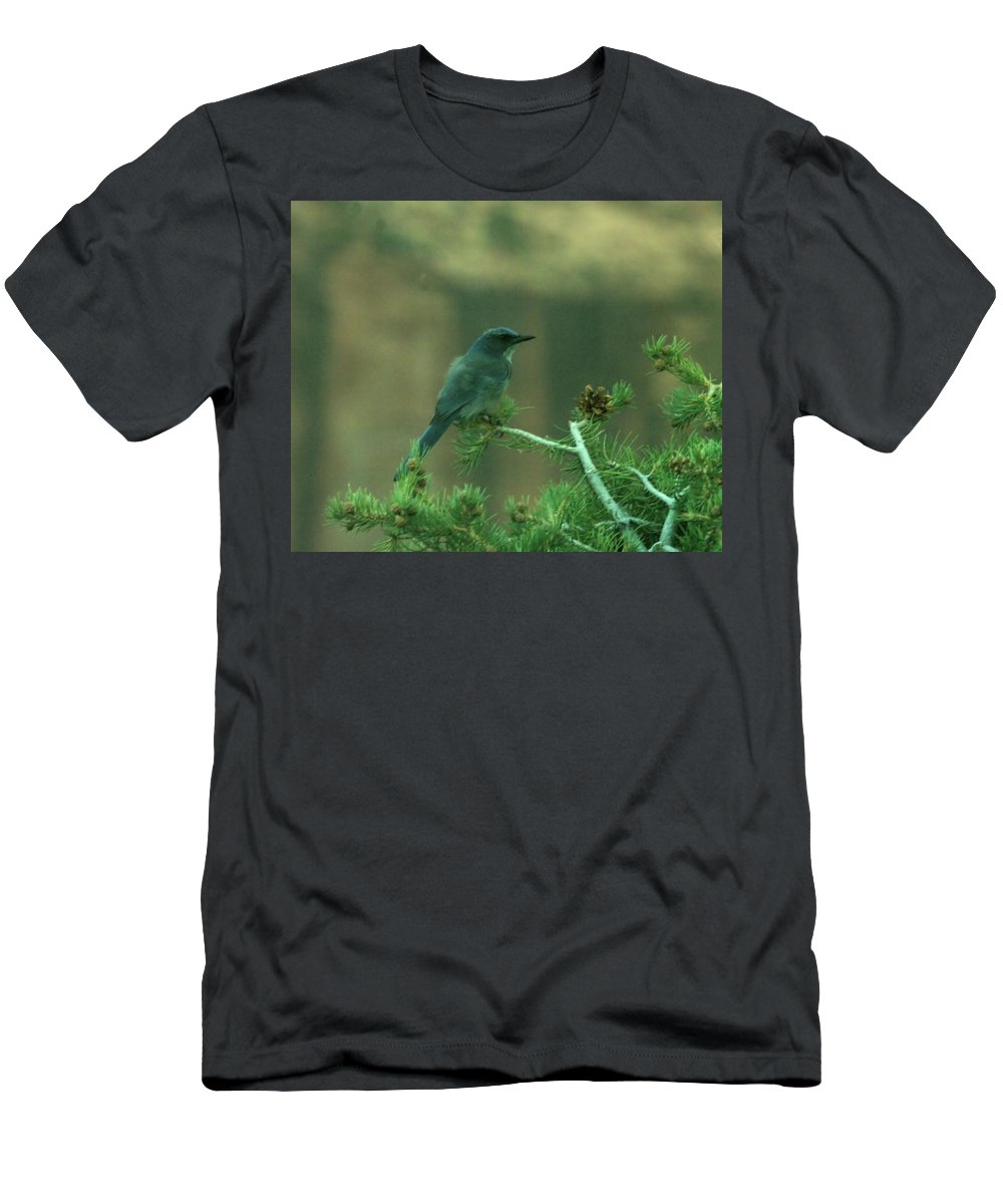 Men's T-Shirt (Athletic Fit) featuring the photograph Scrub Jay by Jeff Swan