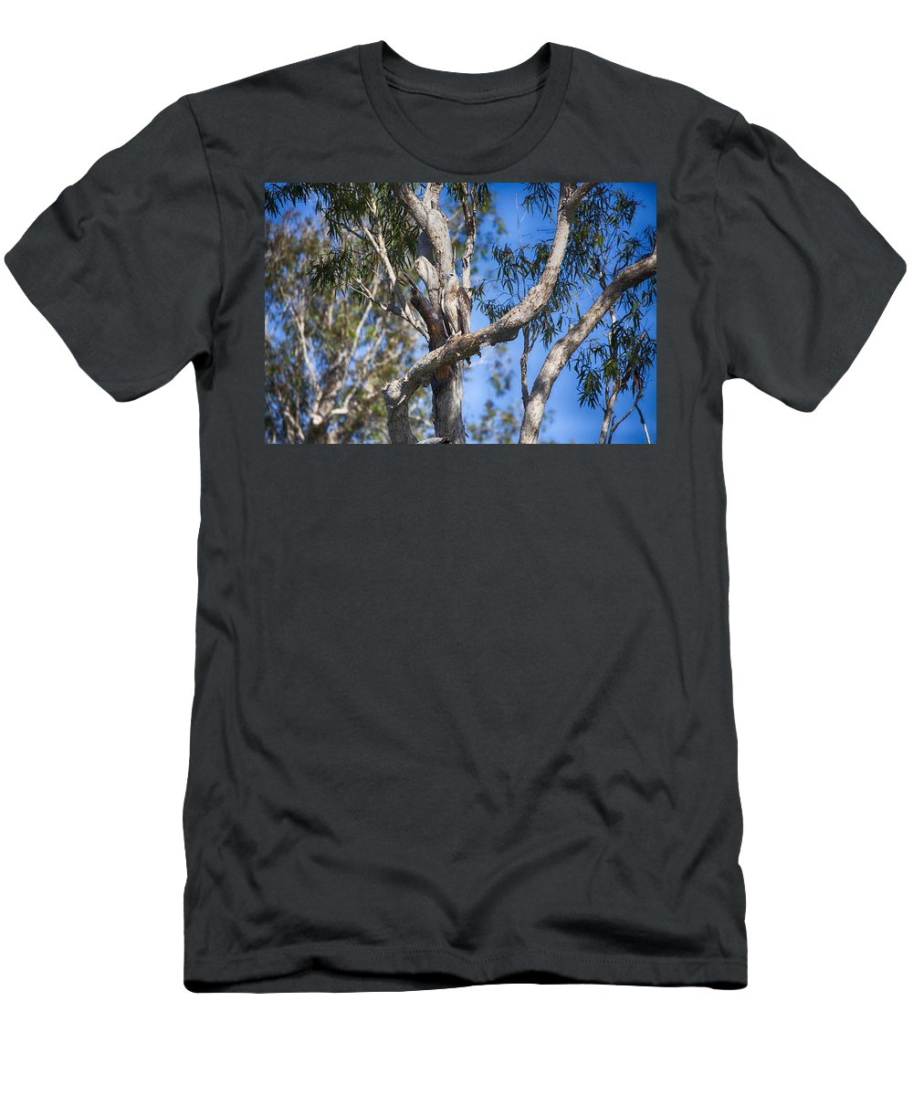Sea Eagle Men's T-Shirt (Athletic Fit) featuring the photograph Sea Eagle Vantage Point by Douglas Barnard