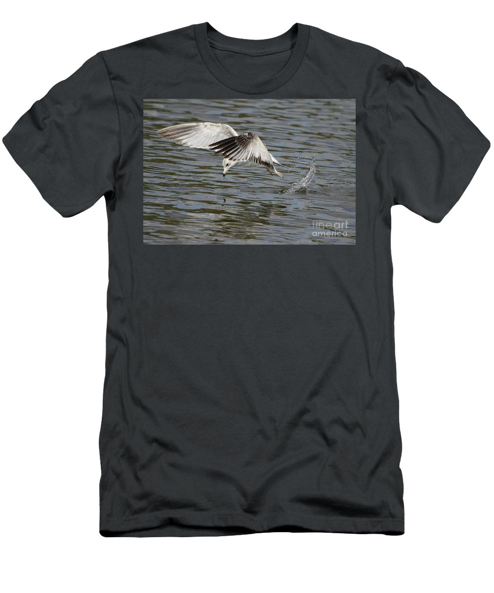 Seagull Men's T-Shirt (Athletic Fit) featuring the photograph Seagull Dive by Deborah Benoit