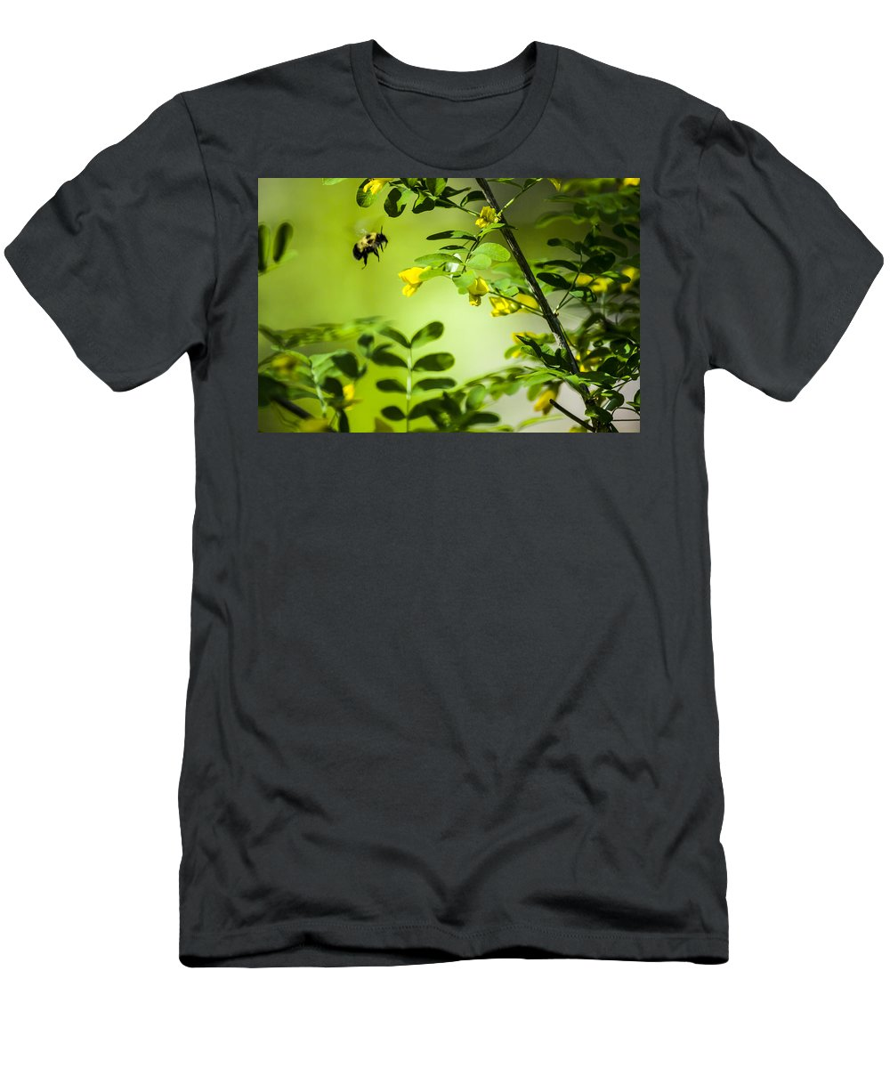 Bee Bumblebee Men's T-Shirt (Athletic Fit) featuring the photograph Seeking Nectar by Albert Seger