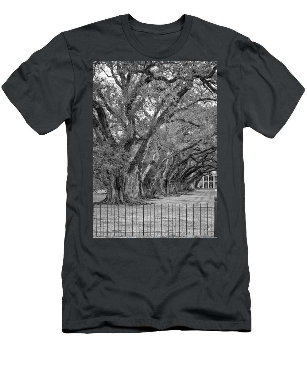 Oak Alley Plantation Men's T-Shirt (Athletic Fit) featuring the photograph Sentinels Monochrome by Steve Harrington