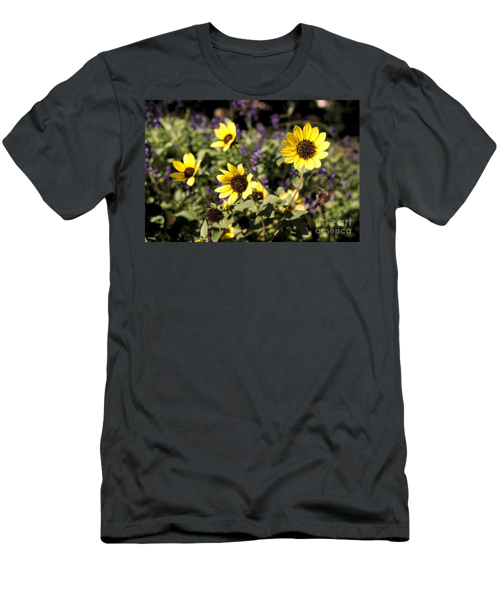 Yellow Men's T-Shirt (Athletic Fit) featuring the photograph September Yellow by Gary Richards