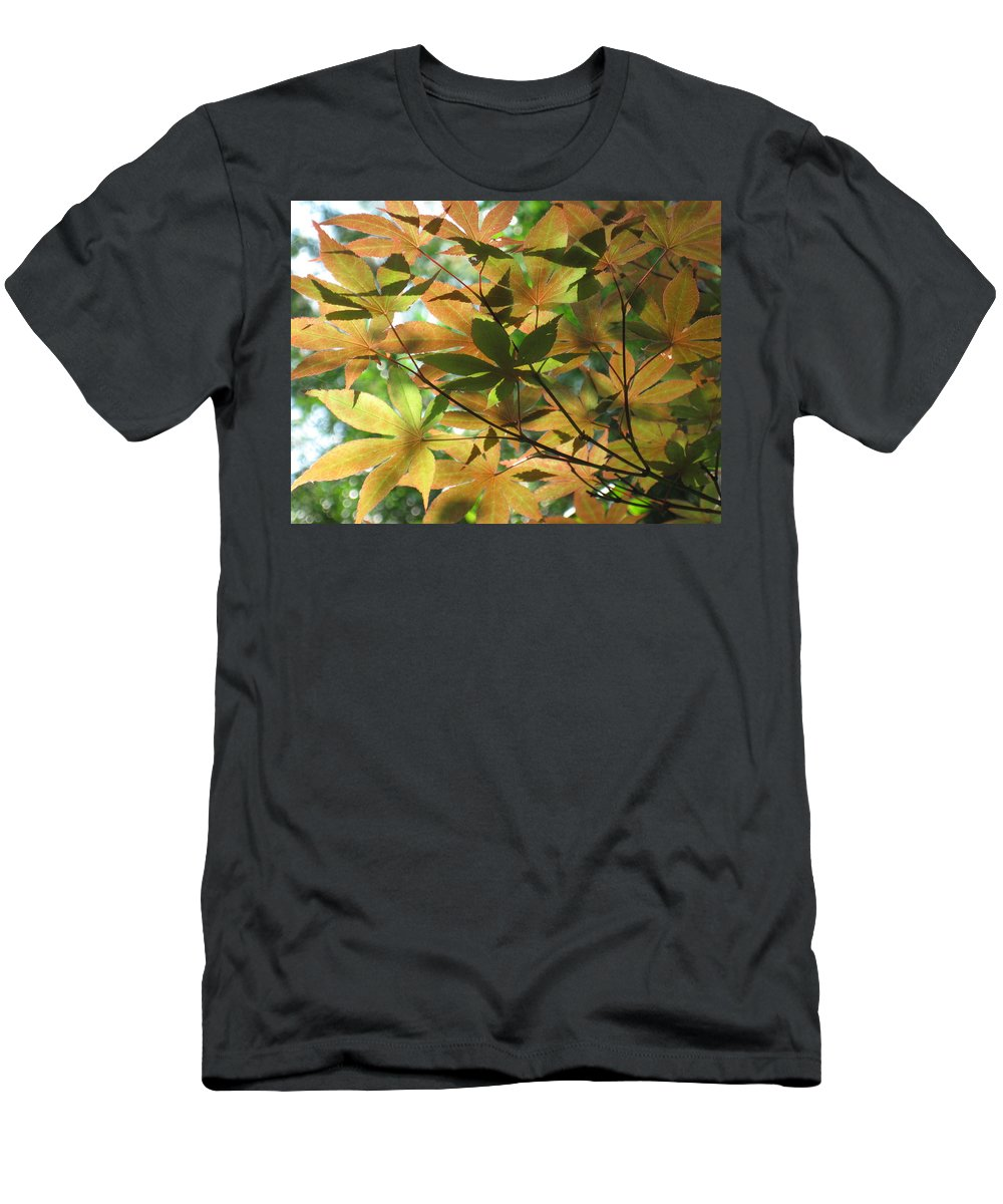 Shading Men's T-Shirt (Athletic Fit) featuring the photograph Shadows Of Maple by Ron Monsour