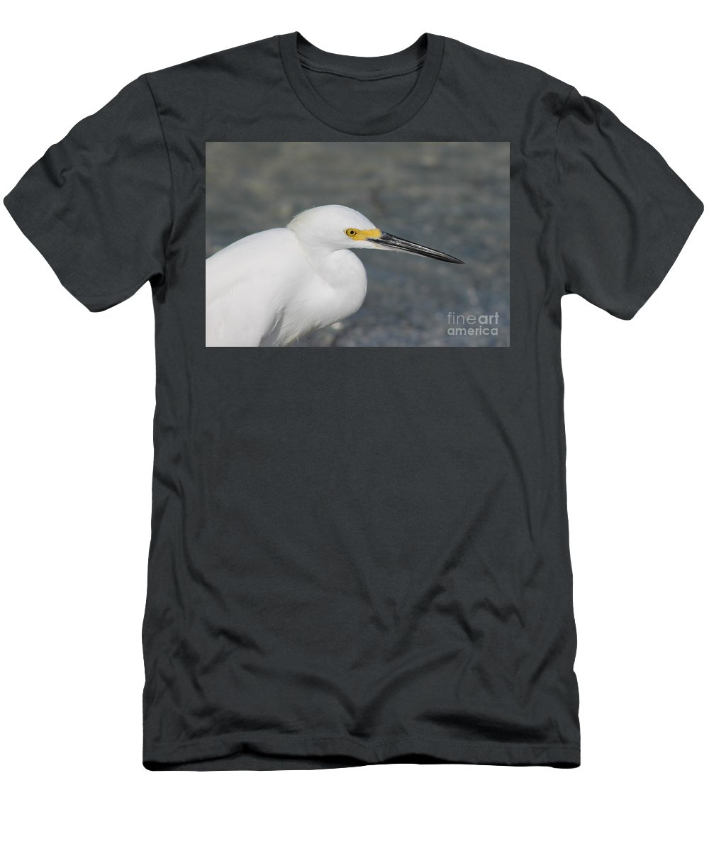 Ibis Men's T-Shirt (Athletic Fit) featuring the photograph Shadows Of Yellow by Patricia Twardzik