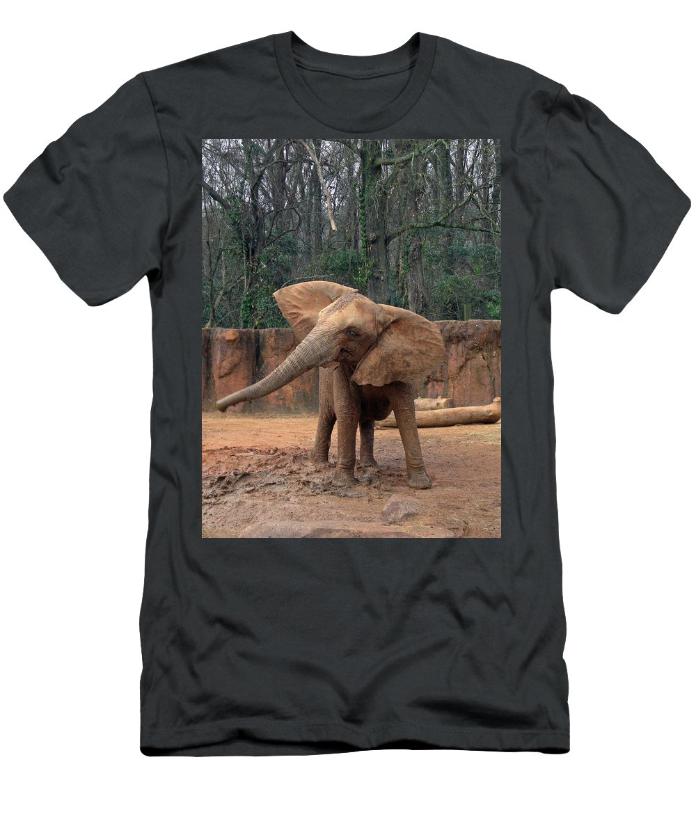 Elephants Men's T-Shirt (Athletic Fit) featuring the photograph Shake It Up Baby Now by Skip Willits