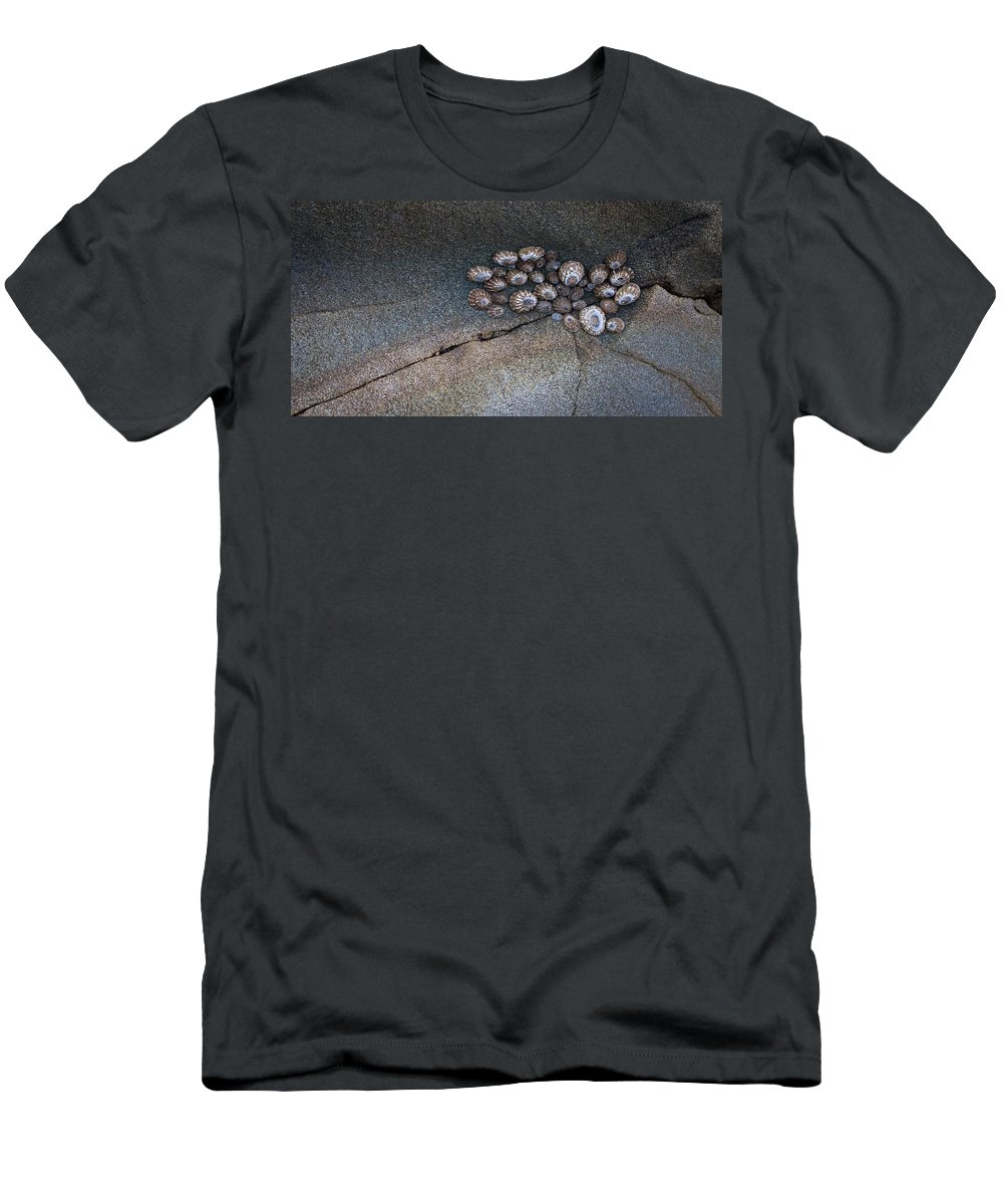 Rock Men's T-Shirt (Athletic Fit) featuring the photograph Shell Games by Dayne Reast
