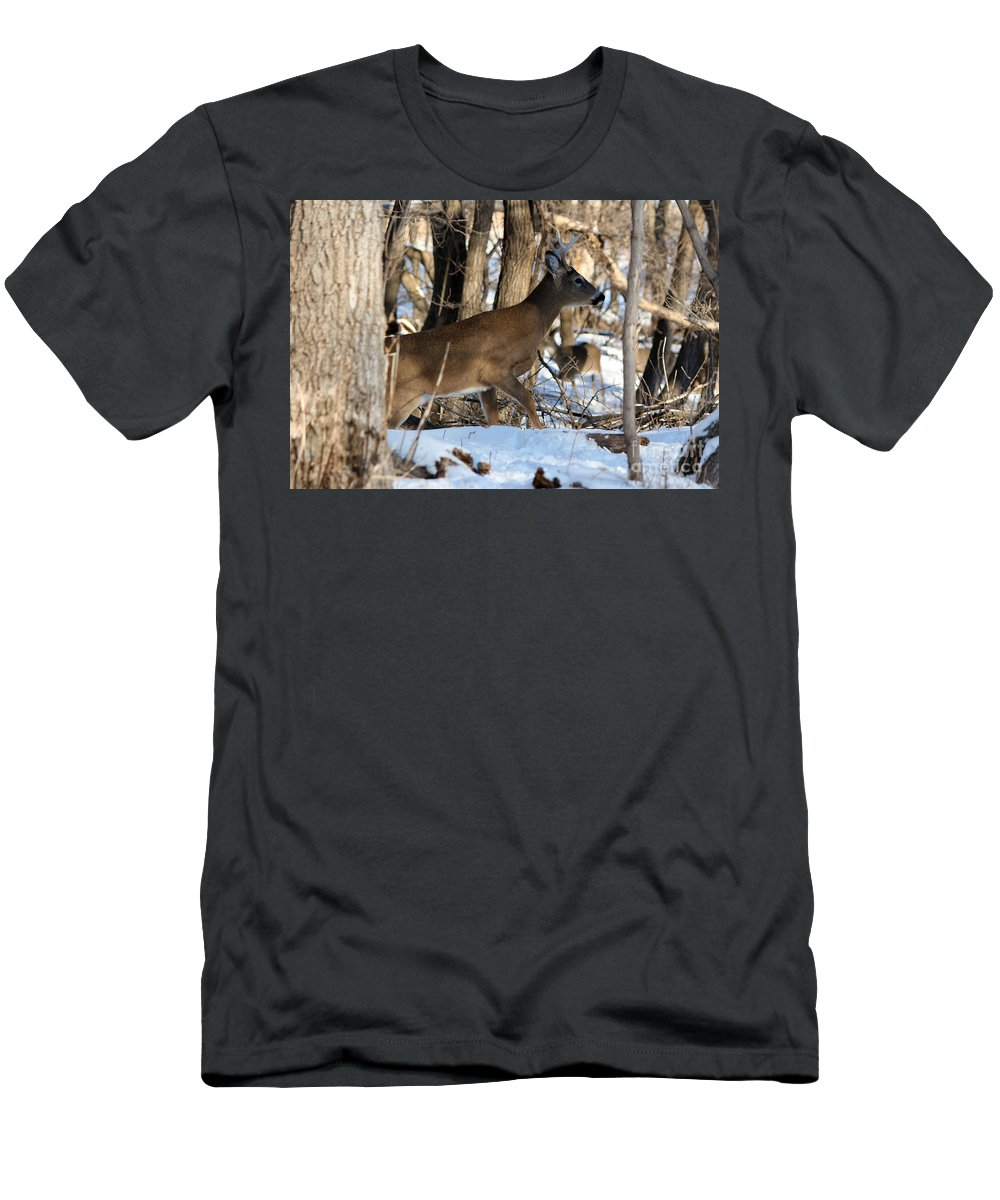 Deer Men's T-Shirt (Athletic Fit) featuring the photograph Silent Creeper by Lori Tordsen