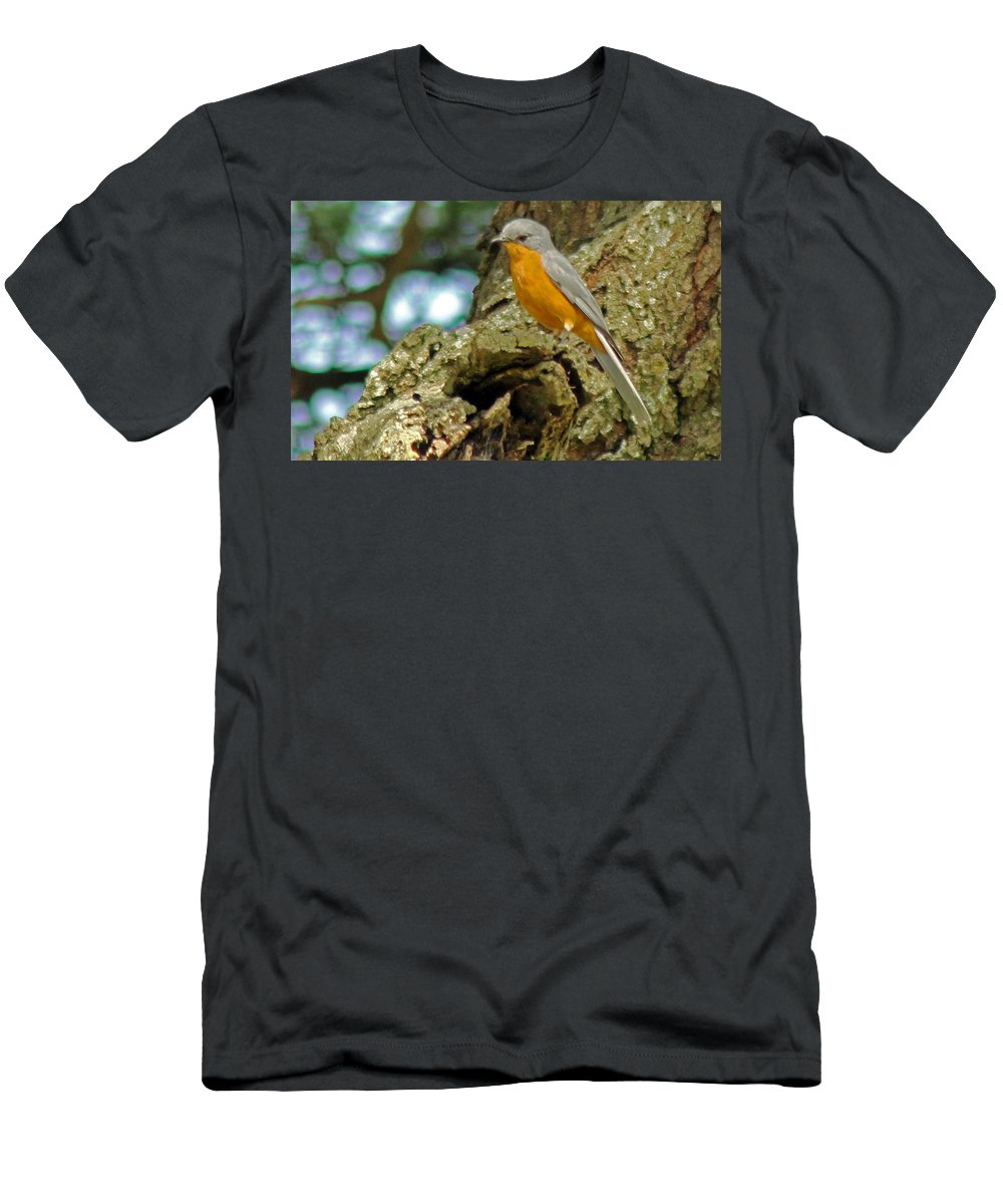 Silverbird Men's T-Shirt (Athletic Fit) featuring the photograph Silverbird by Tony Murtagh