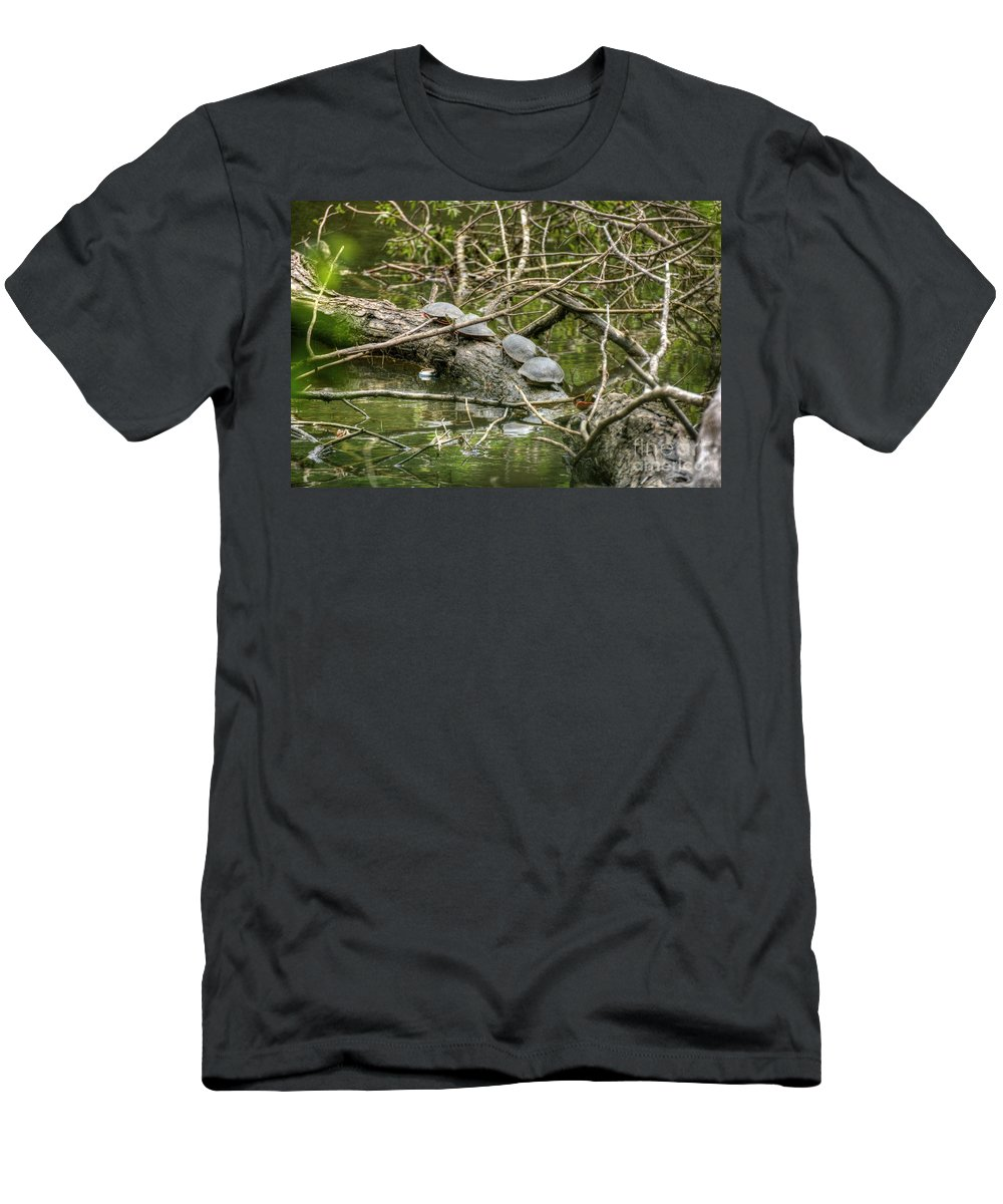 Turtle Men's T-Shirt (Athletic Fit) featuring the photograph Six Turtle On A Log by M Dale