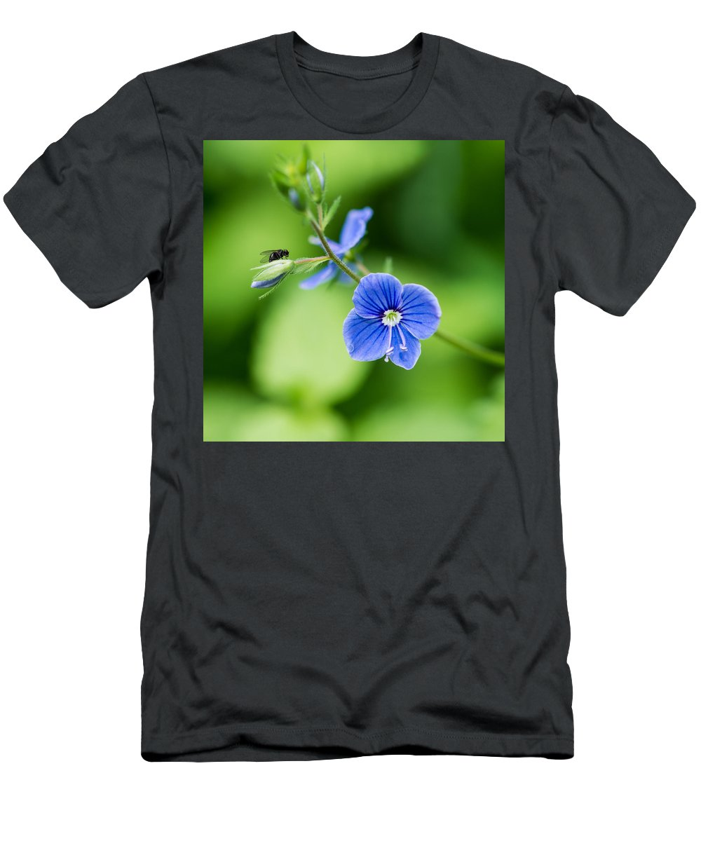 Beautiful Men's T-Shirt (Athletic Fit) featuring the photograph Small Fly On A Small Wildflower - Featured 3 by Alexander Senin