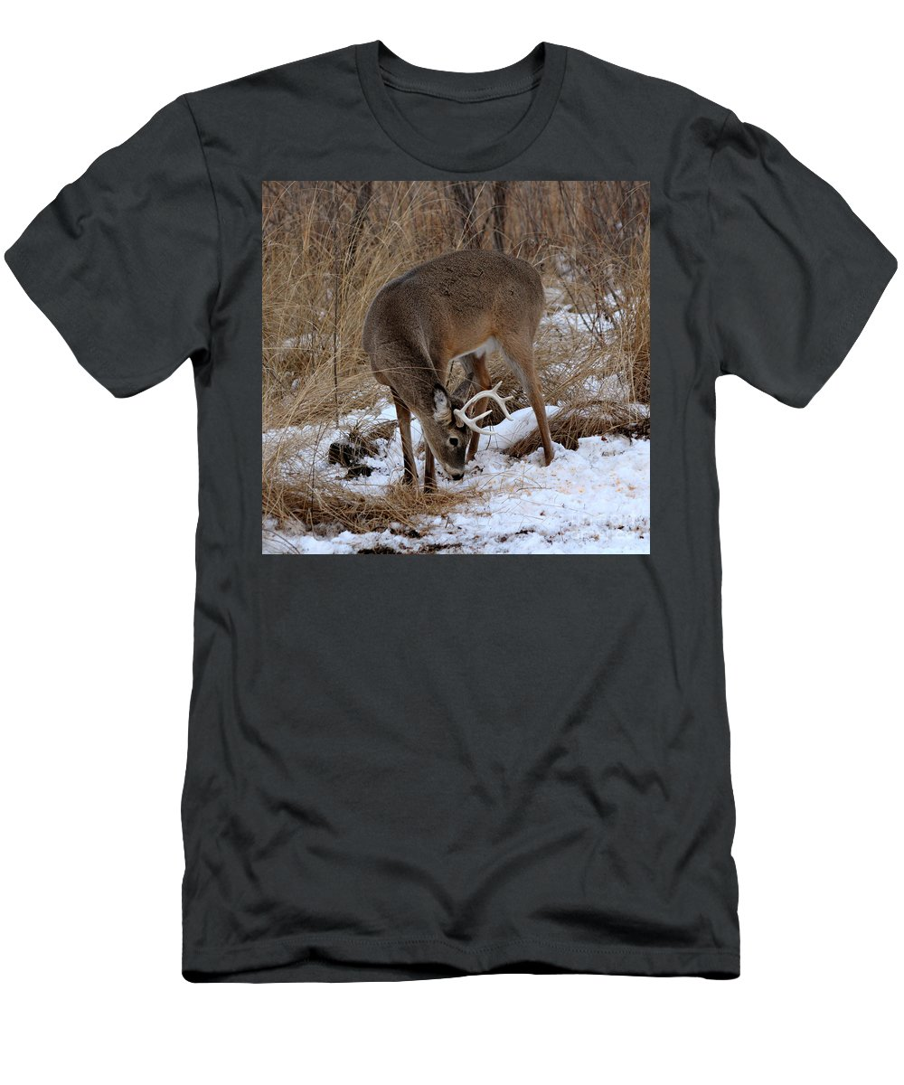 Deer Men's T-Shirt (Athletic Fit) featuring the photograph Sniffing Stag by Lori Tordsen