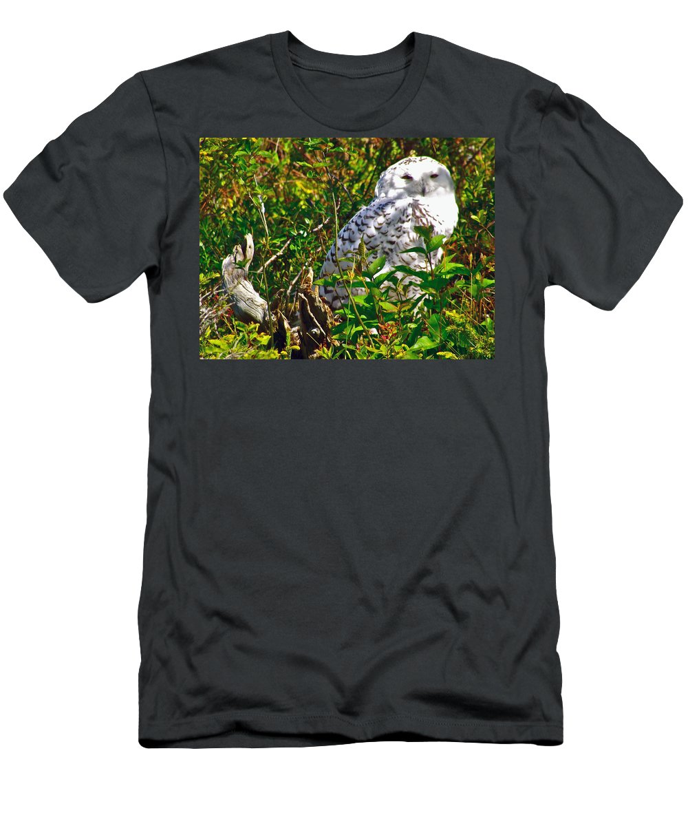 Snowy Owl In Salmonier Nature Park Men's T-Shirt (Athletic Fit) featuring the photograph Snowy Owl In Salmonier Nature Park-nl by Ruth Hager
