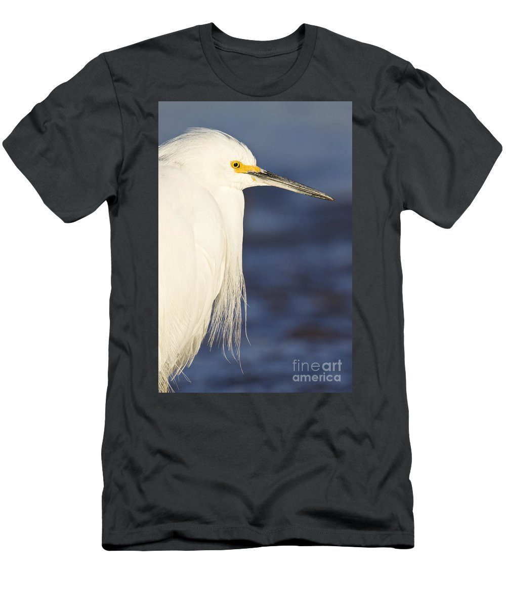 Egret Men's T-Shirt (Athletic Fit) featuring the photograph Snowy Portrait by Bryan Keil