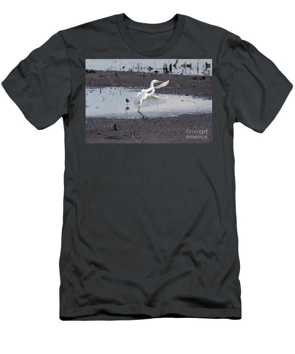 Egret Men's T-Shirt (Athletic Fit) featuring the photograph Snowy White Egret by Lori Tordsen
