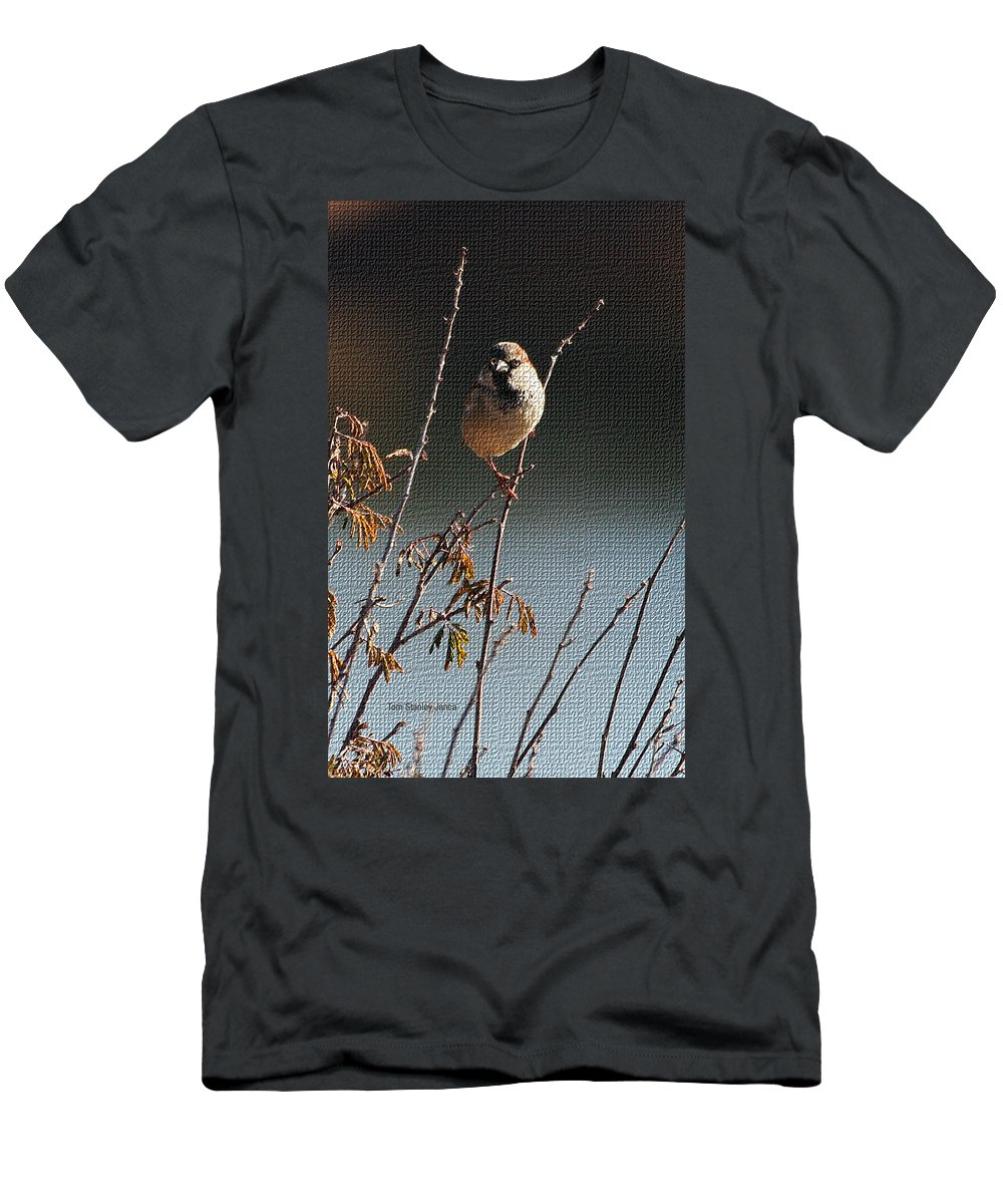 Sparrow On A Twig Men's T-Shirt (Athletic Fit) featuring the photograph Sparrow On A Twig by Tom Janca