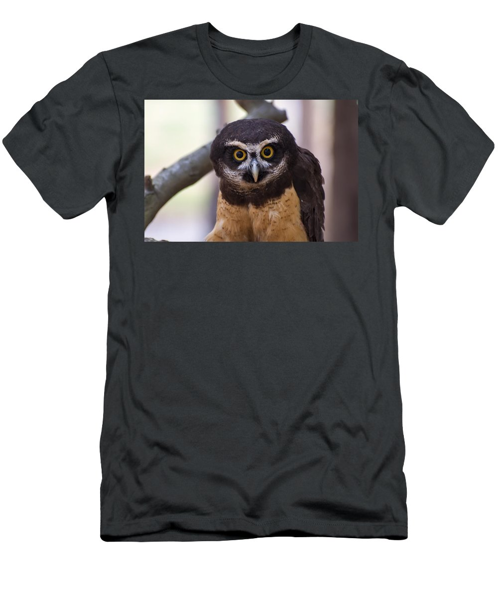 Pulsatrix Perspicillata Men's T-Shirt (Athletic Fit) featuring the digital art Spectacled Owl by Chris Flees