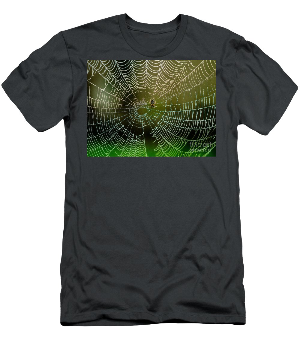 Arachnid Men's T-Shirt (Athletic Fit) featuring the photograph Spider In Web 3 by Tracy Knauer