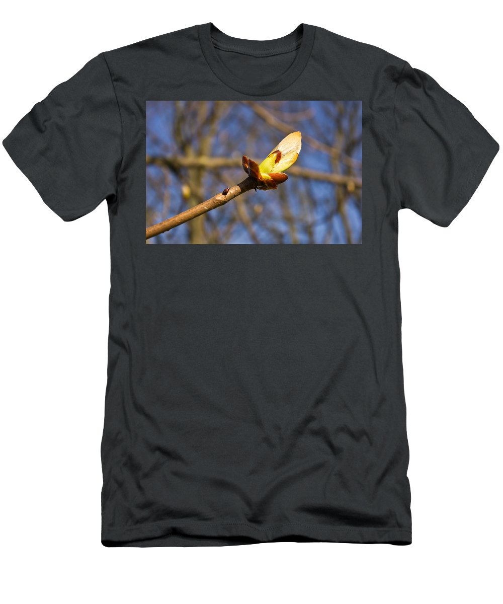 Branch Men's T-Shirt (Athletic Fit) featuring the photograph Spring Bud by David Head