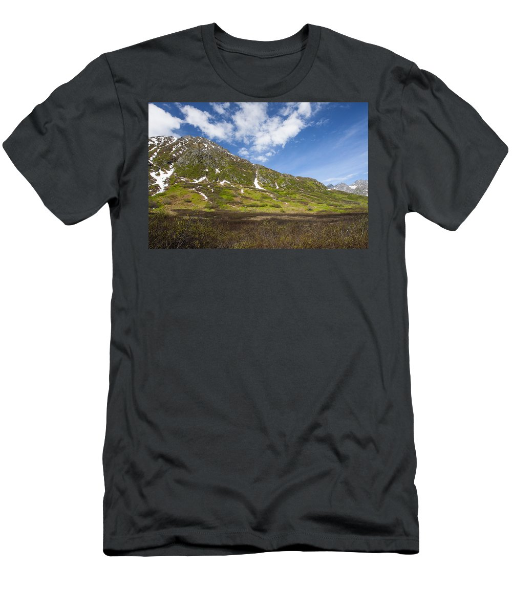 Doug Lloyd Men's T-Shirt (Athletic Fit) featuring the photograph Spring by Doug Lloyd