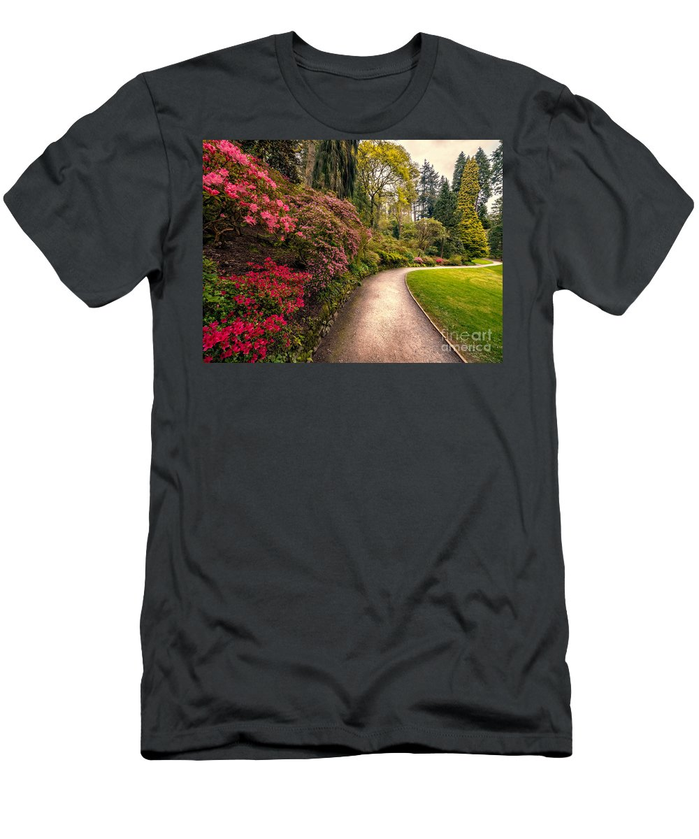 Cymru Men's T-Shirt (Athletic Fit) featuring the photograph Spring Footpath by Adrian Evans