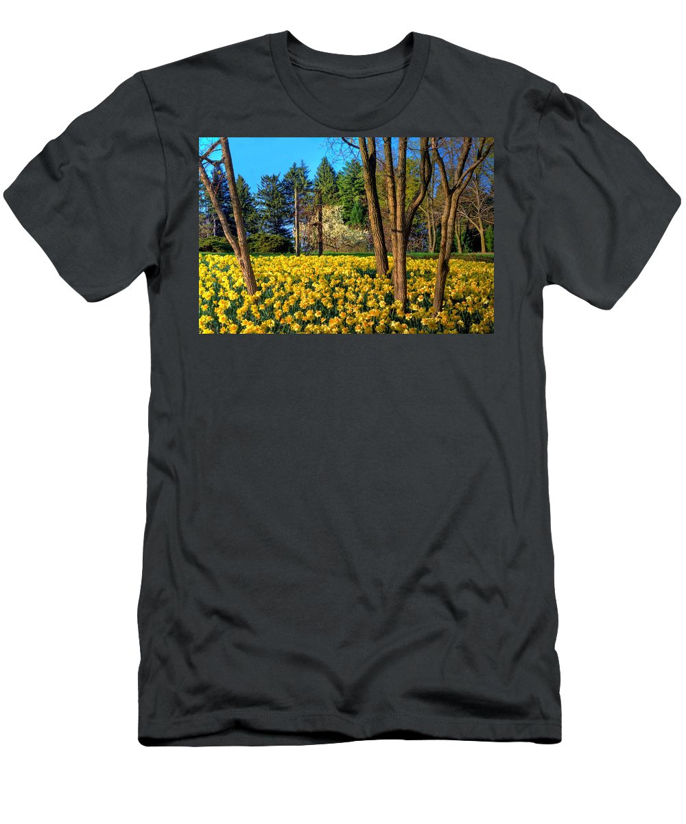 Yellow Men's T-Shirt (Athletic Fit) featuring the photograph Spring Is In The Air by John Absher