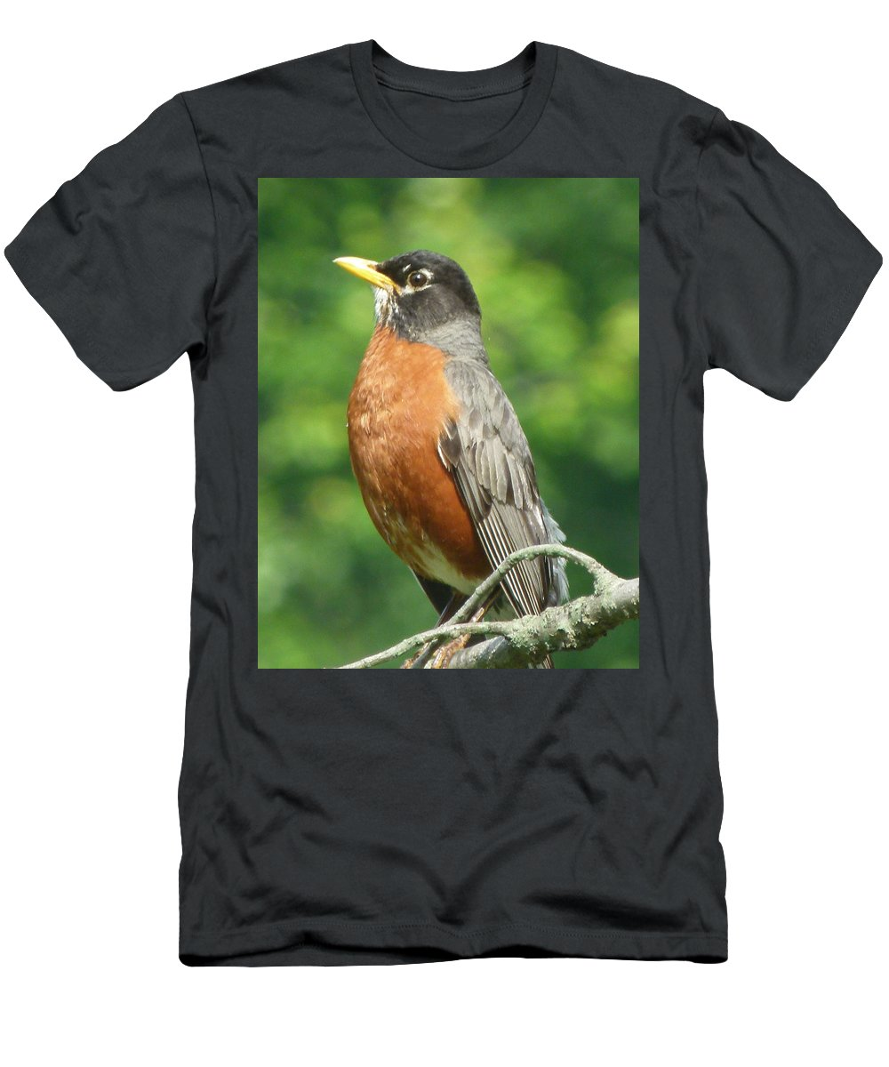 Bird Men's T-Shirt (Athletic Fit) featuring the photograph Spring Robin by Richard Bryce and Family