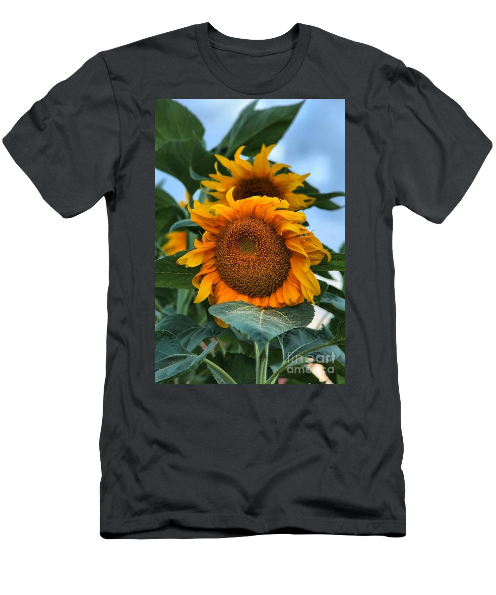 Sunflowers Men's T-Shirt (Athletic Fit) featuring the photograph Squamish Sunflower Portrait by Adam Jewell