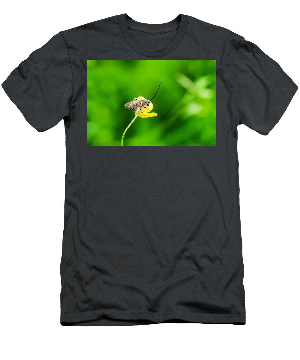 Animal Men's T-Shirt (Athletic Fit) featuring the photograph Staking A Claim - Featured 3 by Alexander Senin