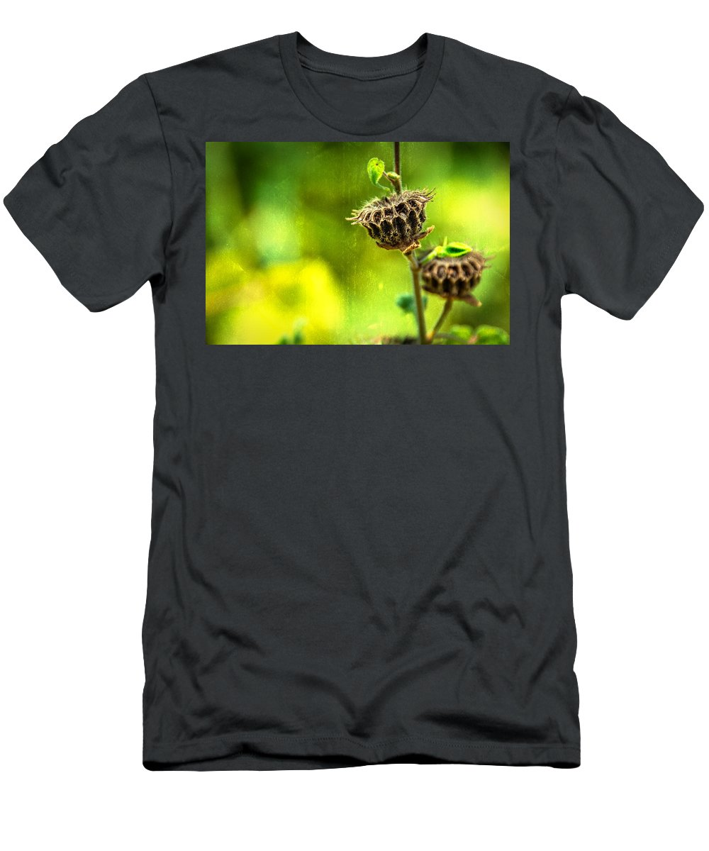Sunflower Men's T-Shirt (Athletic Fit) featuring the photograph Stark Beauty by Jon Woodhams