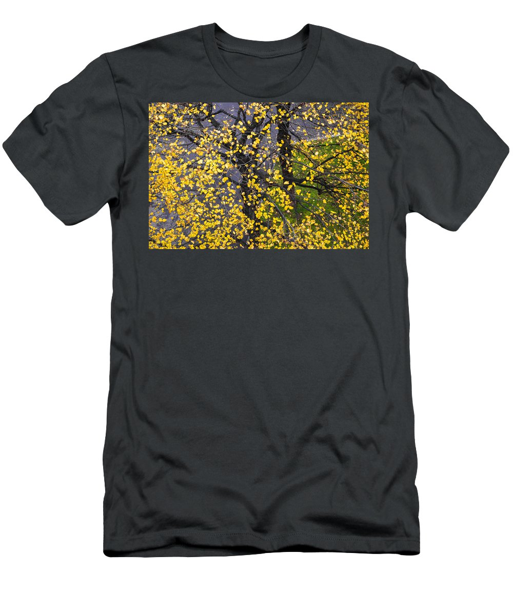Abstract Men's T-Shirt (Athletic Fit) featuring the photograph Starry Tree by Alexander Senin
