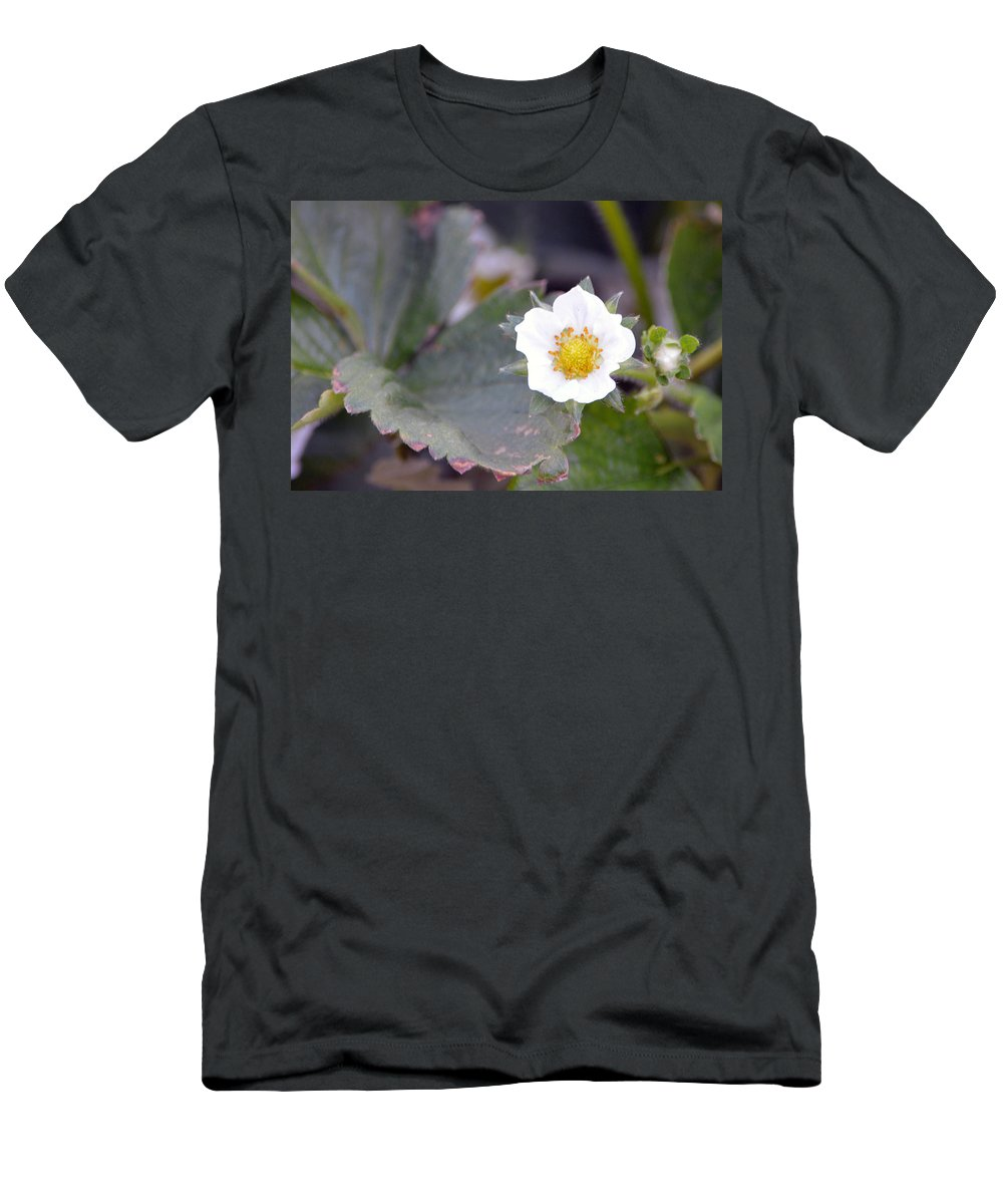 Strawberry Men's T-Shirt (Athletic Fit) featuring the photograph Strawberrys Flower by Brent Dolliver