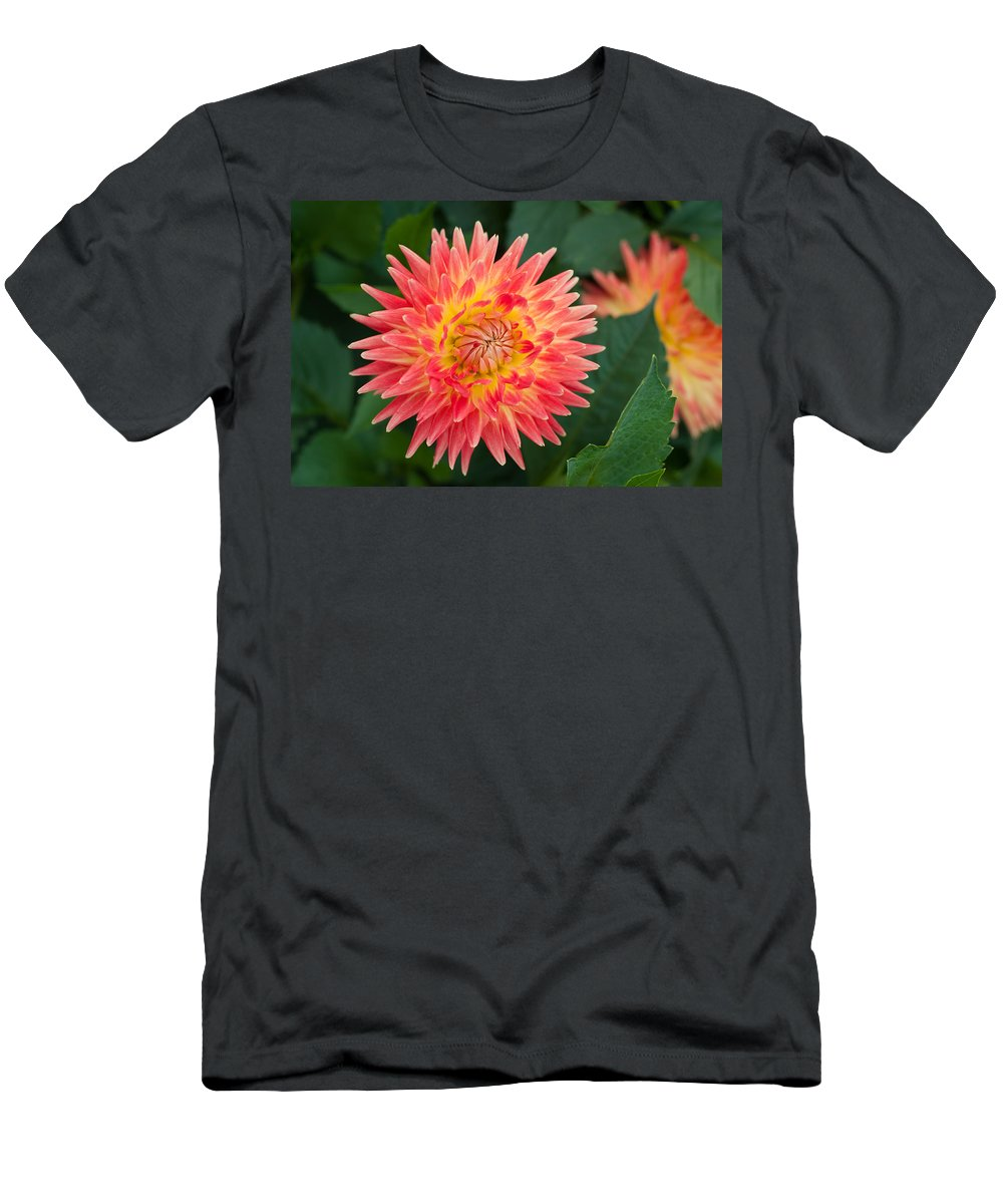 Miguelwinterpacht Men's T-Shirt (Athletic Fit) featuring the photograph Summer Garden Joy by Miguel Winterpacht