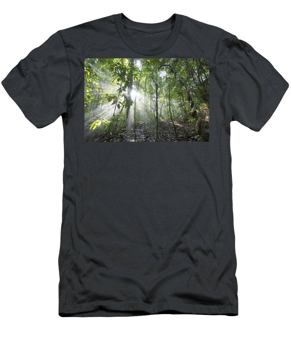 Feb0514 Men's T-Shirt (Athletic Fit) featuring the photograph Sun Shining In Tropical Rainforest by Cyril Ruoso