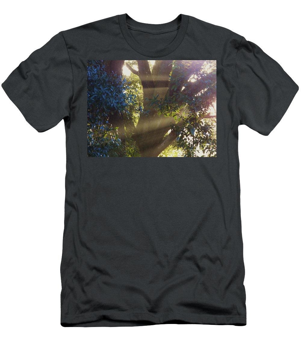 Sunshine Men's T-Shirt (Athletic Fit) featuring the photograph Sunbeams In The Tree by D Hackett