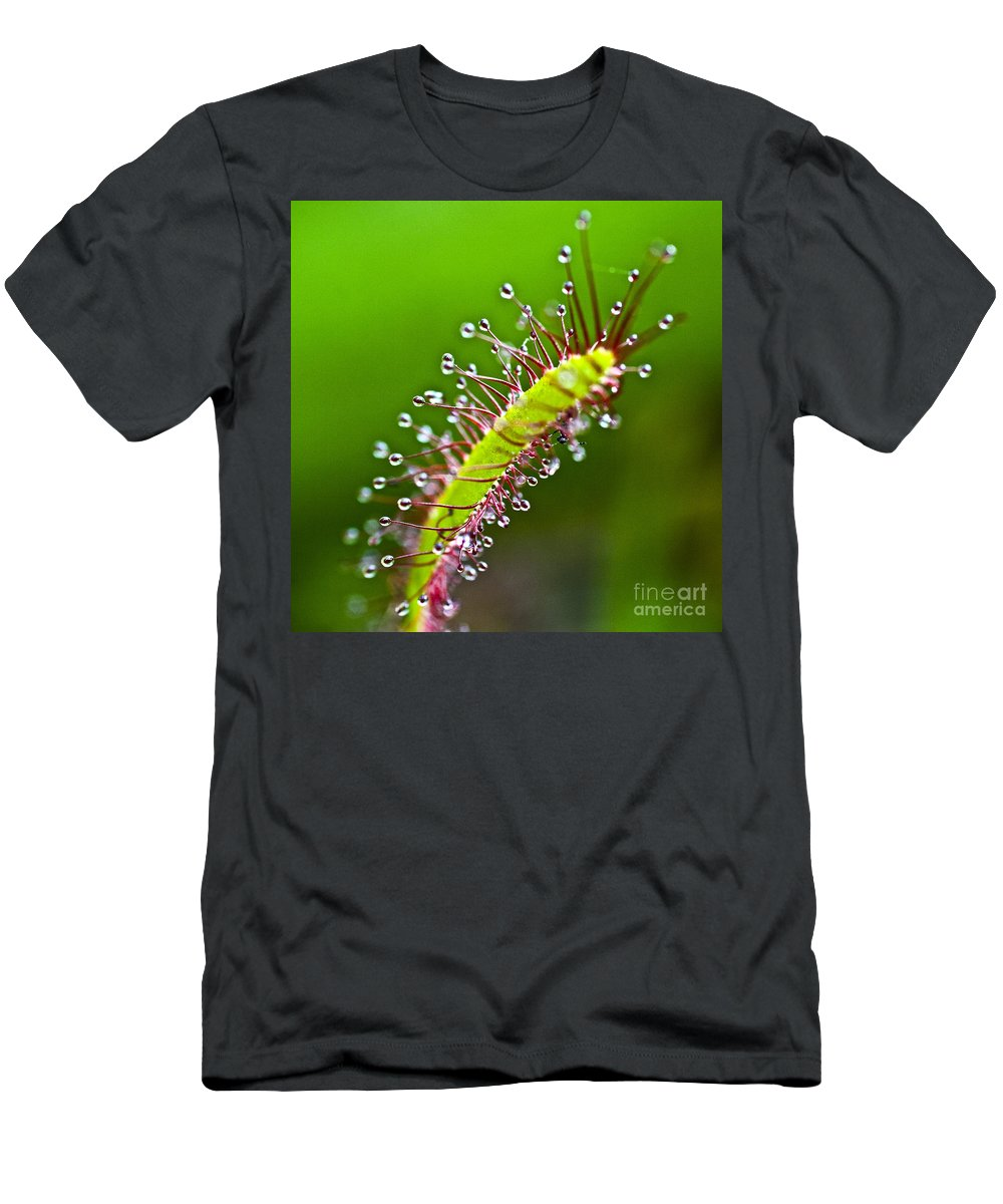 Sundew Men's T-Shirt (Athletic Fit) featuring the photograph Sundew by Heiko Koehrer-Wagner