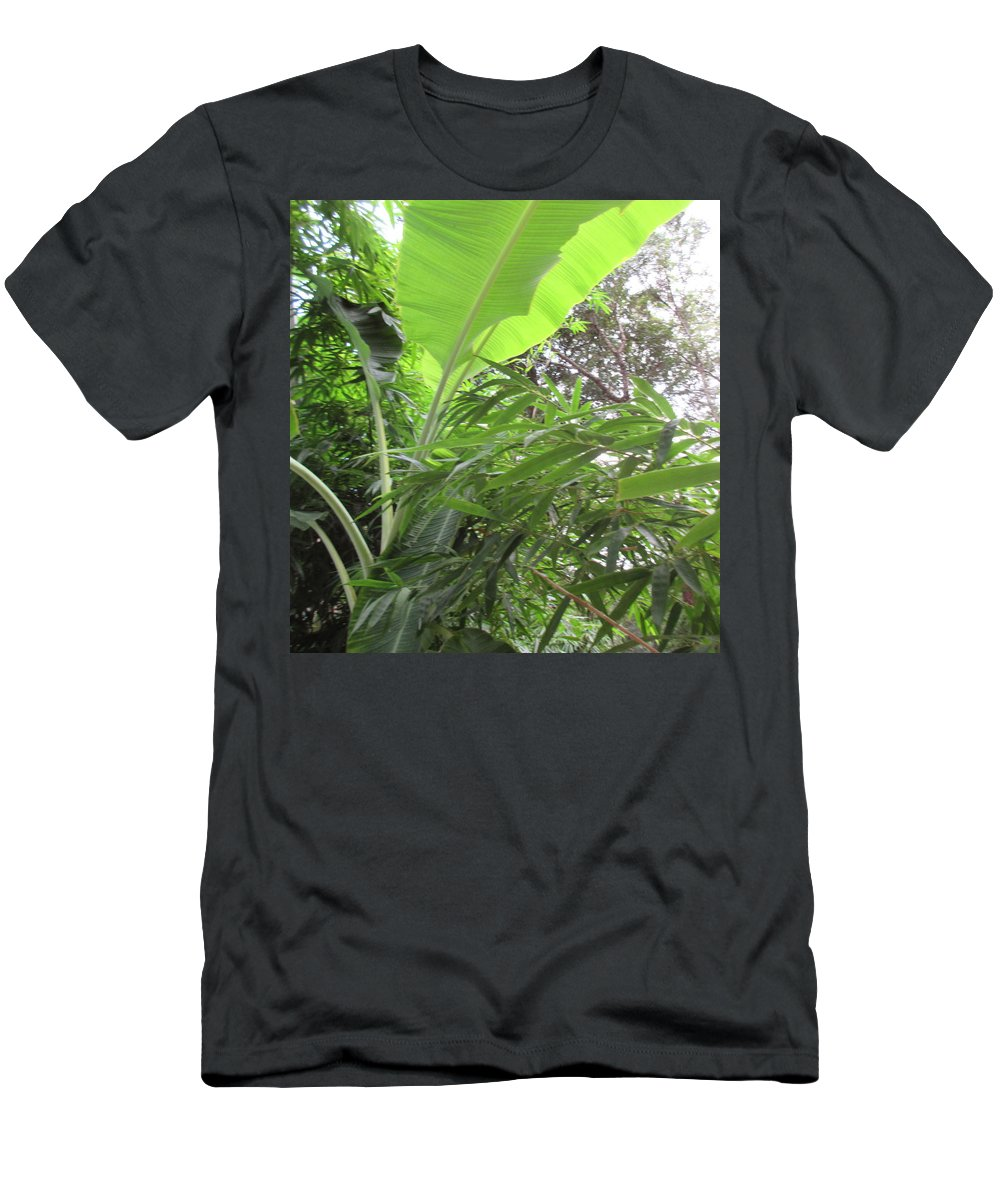 Art Men's T-Shirt (Athletic Fit) featuring the photograph Sunlit Banana With Bamboo by Ashley Goforth