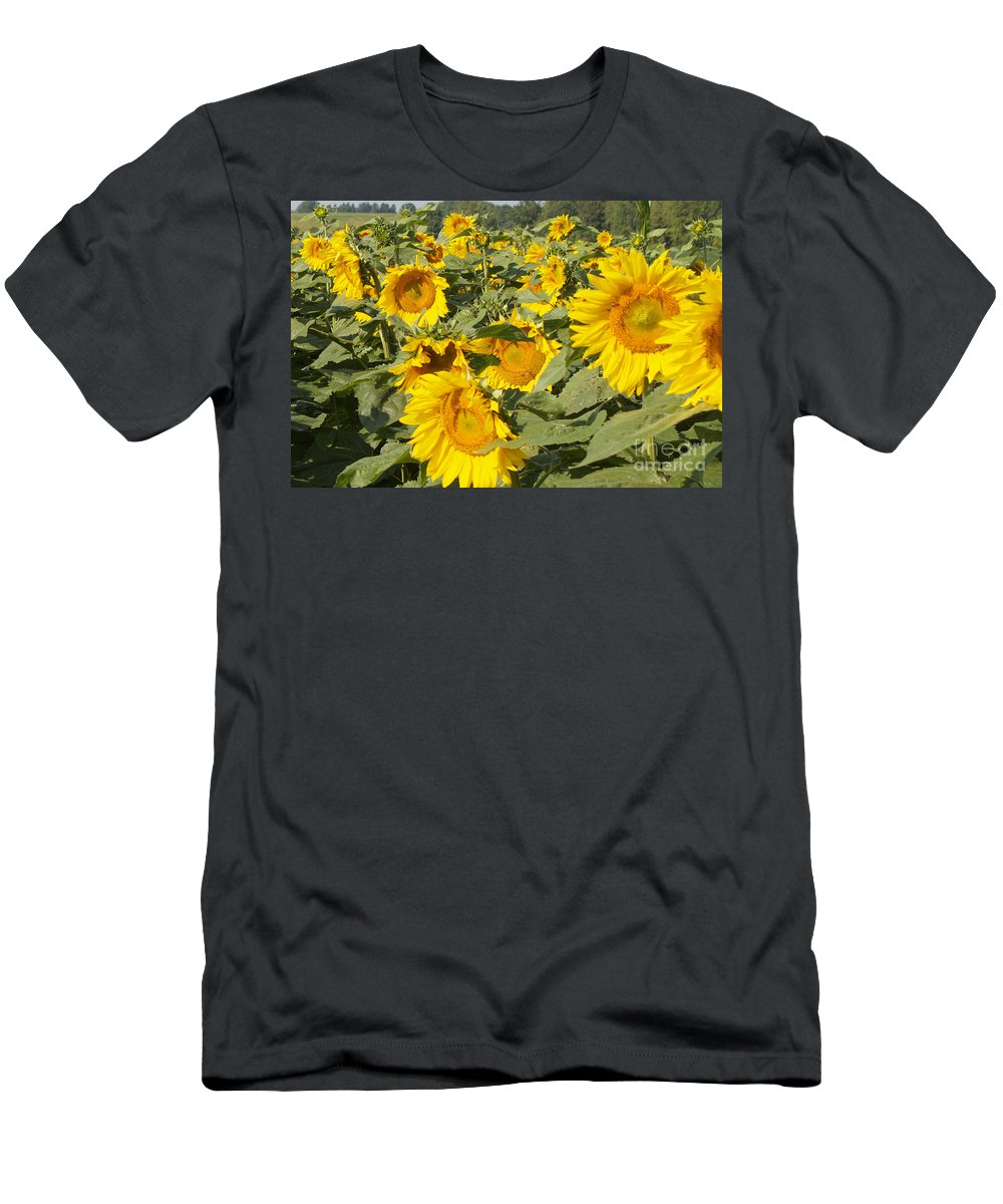 Yellow Men's T-Shirt (Athletic Fit) featuring the photograph Sunning With Friends by William Norton